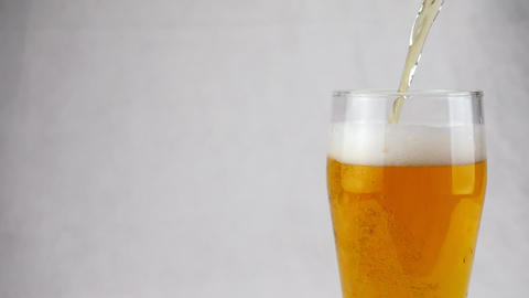Beer is poured into a transparent large glass on a white background Footage