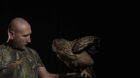 Owl trainer is standing with an owl on his hand in the studio Live Action