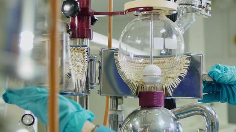 lab assistant prepares equipment in laboratory closeup Footage