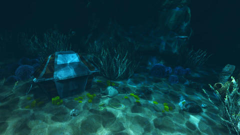 Underwater treasure hunt Footage