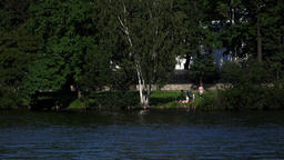 Unidentified family rest on green grass of river bank, under large birch tree Footage