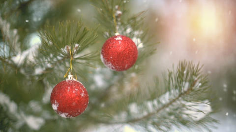 Christmas decoration on pine branch slowmotion seamless loop Footage