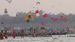 Pilgrims bathing and boats with flags,Allahabad,Kumbh Mela,India Footage