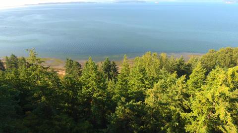 Puget Sound coast ビデオ