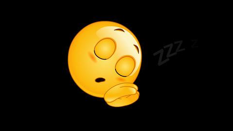 Sleeping emoticon animation CG動画
