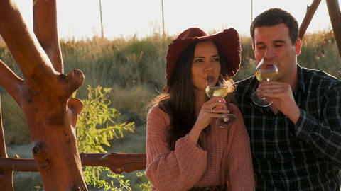 Couple clinking glasses of wine in warm sunset light Footage