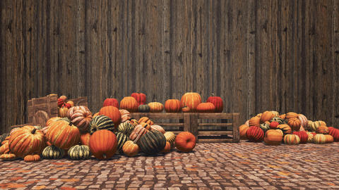 Autumn pumpkins on wooden background with copy space Footage