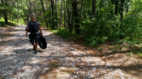 A young man tourist on a forest trail goes with a backpack in a pine forest Footage