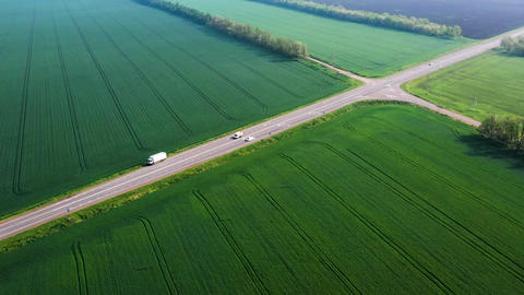 The movement of a white car on the highway among the green fields. Wheat field Live Action