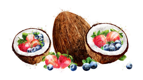 Watercolor appearance animation of the coconut, blueberries and strawberry CG動画