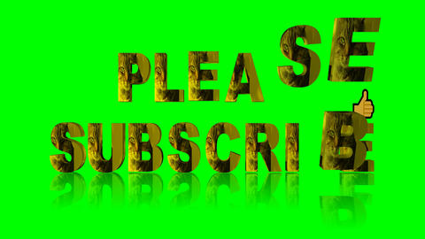 094 3d animated text please subscribe with face of cat on a green background Animation