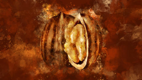The appearance of the walnut on a watercolor background CG動画