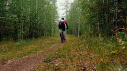rider a cyclist riding along a forest trail Footage