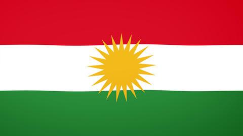 Kurdistan Flag Composition Videos animados