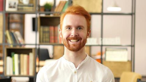 Happy businessman, Designer, Freelancer in Office Footage
