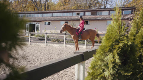 Brunette Caucasian female equestrian sitting on the back... Stock Video Footage