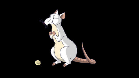 White rat crawls out and eats cheese animation Alpha Matte Videos animados