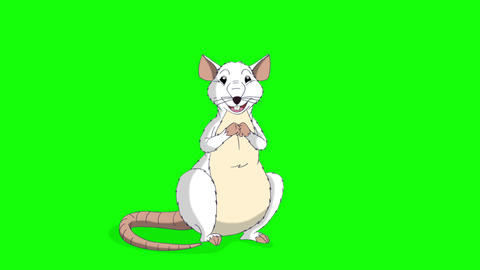 White rat sits and laughs animation Chroma Key Videos animados