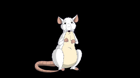 White rat sits and laughs animation Alpha Matte Videos animados