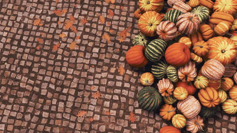 Autumn pumpkins on cobblestone background with copy space top view Live Action