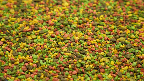 Multicolored Granular Fish Food for Feeding Live Action