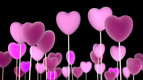 Hearts in Transparent Background Animation