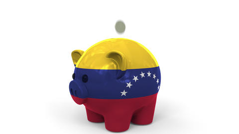 Coins fall into piggy bank painted with flag of Venezuela. National banking Live Action
