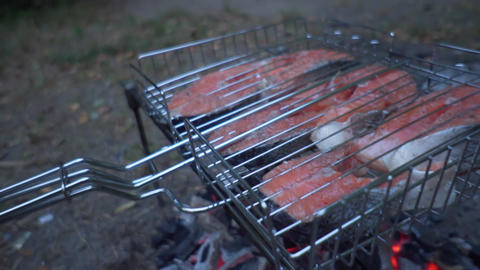 Red fish grilled on a grill at the stake. Salmon fillets Live Action