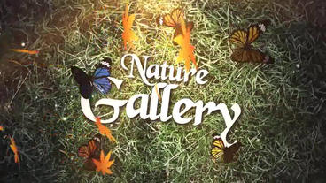 Nature Gallery Plantilla de After Effects