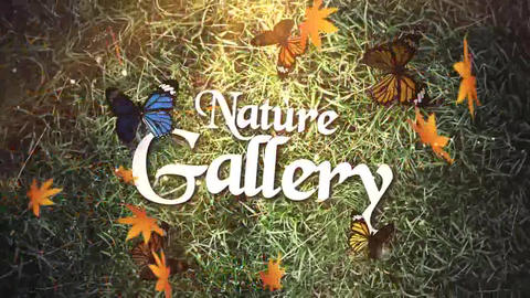 Nature Gallery After Effects Template