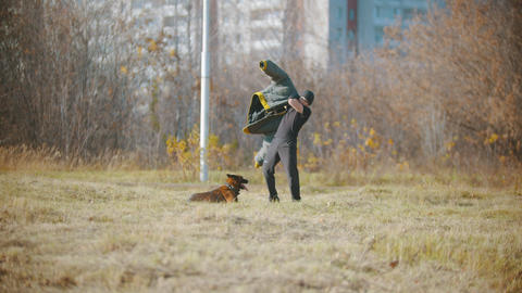 A man training his german shepherd dog - putting on protective sleeves and Footage