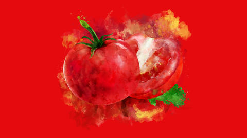 The appearance of the tomato on a watercolor stain Animation