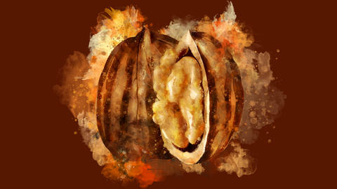 The appearance of the walnut on a watercolor stain CG動画