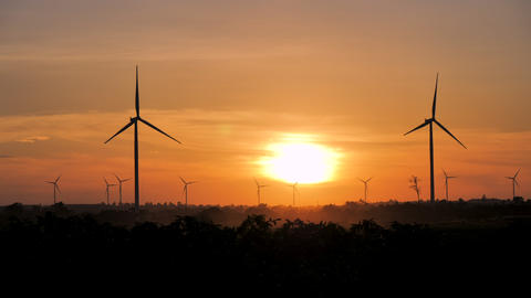Wind turbine in the agriculture field and sunset Live Action