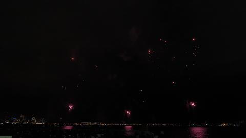 Kobe Fireworks 95 ライブ動画