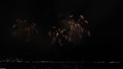 Kobe Fireworks 102 ライブ動画