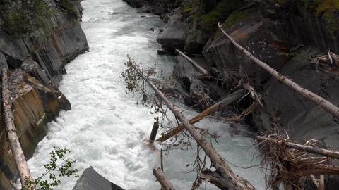 Numa Falls within the Kootenay National Park, British Columbia, Canada Live Action