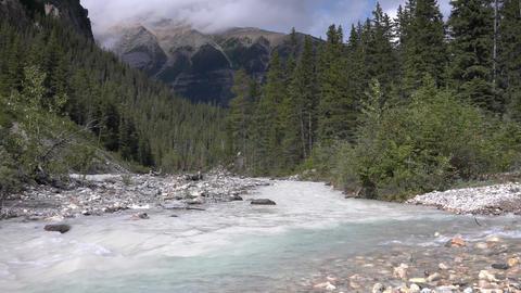 Yoho National Park, British Columbia, Canada Live Action