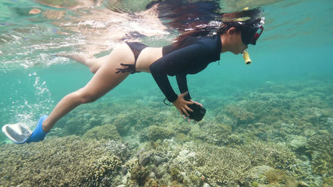 A sexy woman snorkeling and exploring the marine sanctuary rich of marine life Live Action