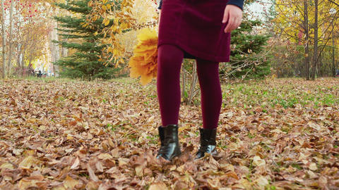 Female legs walking on fallen leaves in autumn park. Close up teenager legs in Live Action