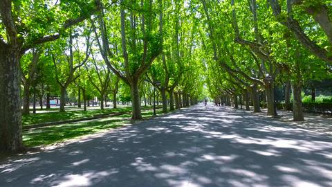 Main street park Footage