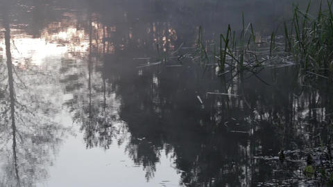 Fog over the river in the morning at May. Reflections in water. Temperate climat Footage