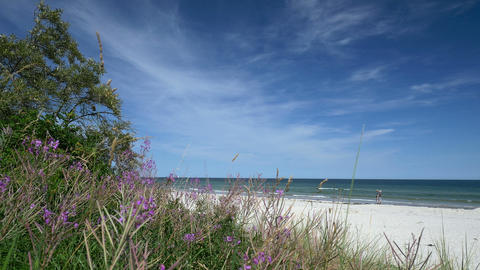 Beach scene with tourists and dune. Rügen - Baltic Sea Footage