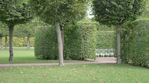 Recreation park with ornamental garden, Landscape design. A place for rest and Live Action