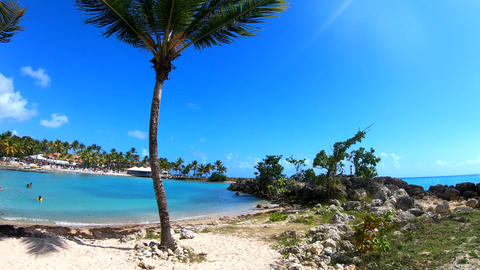 Colorful shore in Bas du Fort beach in Guadeloupe, Caribbean sea Live Action