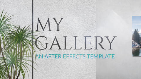 My Gallery After Effects Template