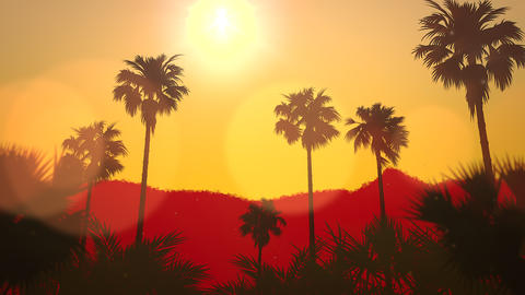 Panoramic view of tropical landscape with palm trees and… Stock Video Footage
