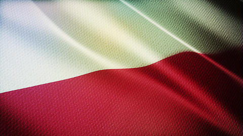 Flag of Poland Realistic 3D Live Action