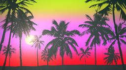 Panoramic view of tropical landscape with palm trees and sunset, summer background Videos animados