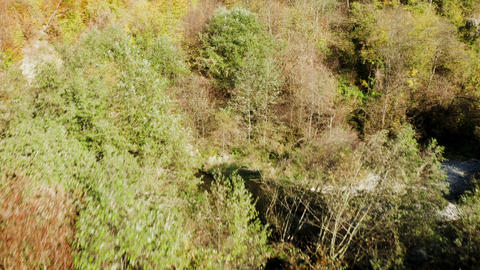 Drone flying over mountain forest in a sunny day of autumn Live Action